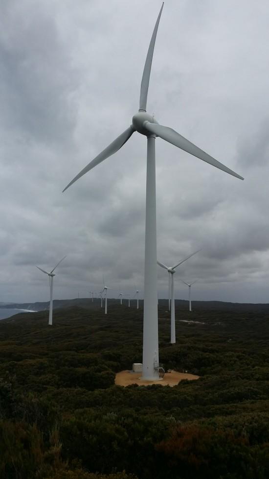 The wind farm in Albany, WA.