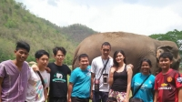 tWild: Giving to an Elephant Rescue Center in Thailand